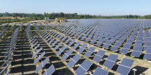 Punjab India 20 MW